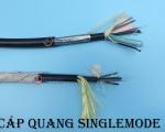 Cáp quang Singlemode 4fo, 8fo, 12fo được ưa chuộng nhất - vì sao?